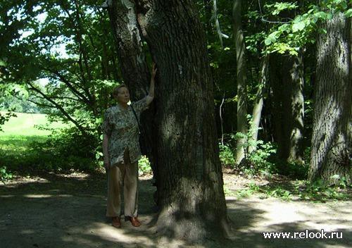 Не хотите ли прогуляться по аллеям Ясной Поляны?