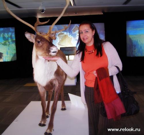 На выставке северных территорий Канады