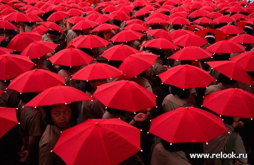 Красная жара в конце января