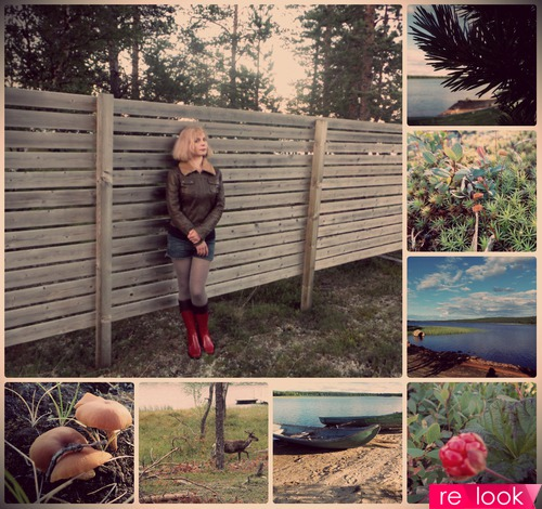 Лето в Лапландии