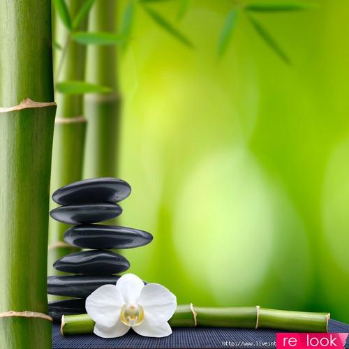 Бамбуковая ткань – удобно, стильно, экологично!