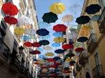 Модные зонты 2013-2014