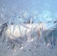 Перья зимы