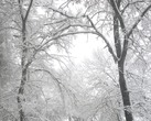 Снежные узоры морозным зимним утром