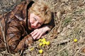 Весна пришла!!!