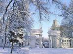 Зима красавица