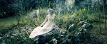Театр моды: кутюрный показ-фильм от Dior осень–зима 2020-2021