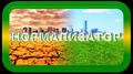 ИНФОРМАЦИОННЫЙ ФОНОВЫЙ АВТОМАТИЧЕСКИЙ НОРМАЛИЗАТОР «ИФАН-1000»
