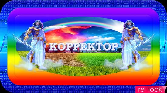 СПЕЦИАЛЬНЫЙ УНИВЕРСАЛЬНЫЙ КОРРЕКТОР ОСОБЫЙ «СУКО-1000»